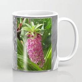 Eucomis named Leia Coffee Mug