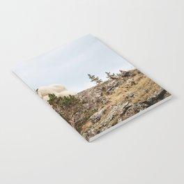 Three Ami-Goats // Scenic Hike Animals Photograph Colorado Wildlife National Park Mountain Goats Notebook
