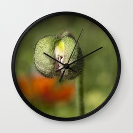 Young Poppy Wall Clock