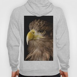 Sea Eagle Hoody