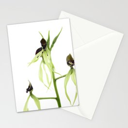 Dancing orchid pulpito serie 5/5 Stationery Cards