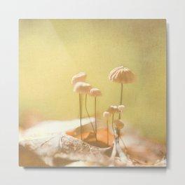 Teeny Mushrooms Metal Print