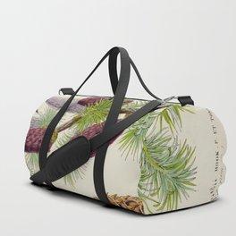 Pine Cone Larix Griffithii Vintage Botanical Floral Flower Plant Scientific Illustration Duffle Bag