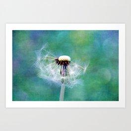 Dandelions blow away in the wind Art Print
