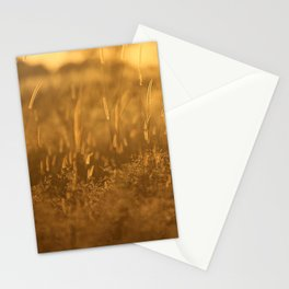 Okavango Savanna Stationery Cards