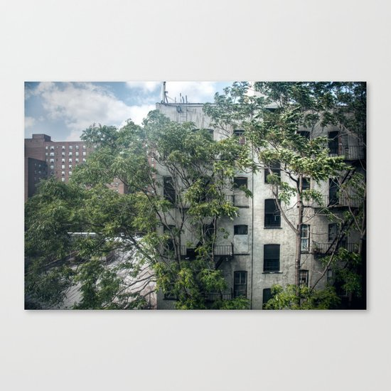 Day One, Through A Window Canvas Print