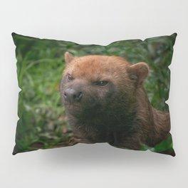 Bush Dog Pillow Sham