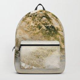 Golden Winter Forest 3 Backpack