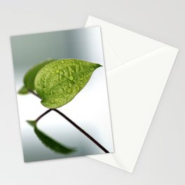 Raindrop Leaves Stationery Cards