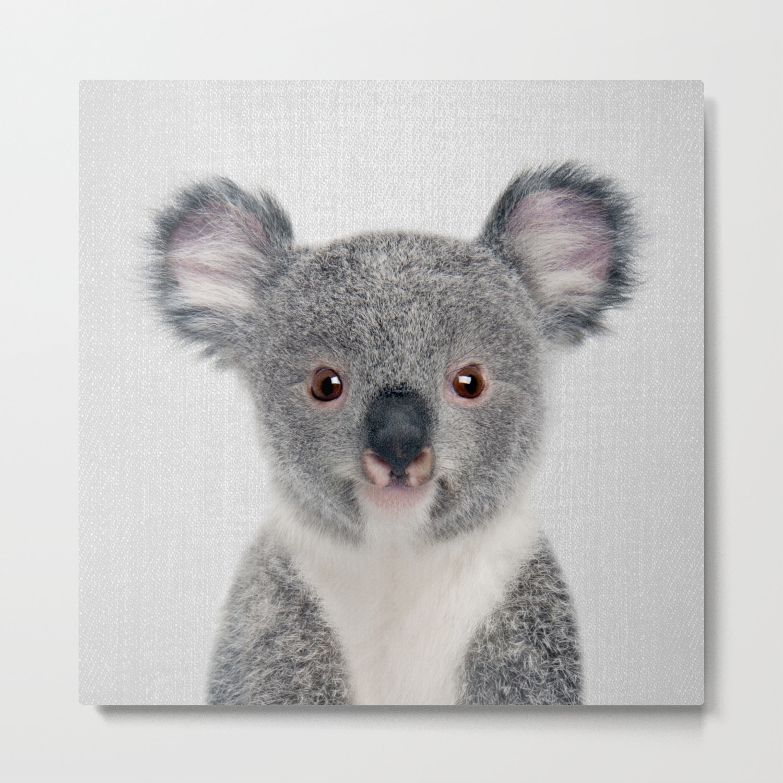 Baby Koala Colorful Metal Print By Galdesign Society6