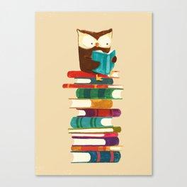 Owl Reading Rainbow Canvas Print