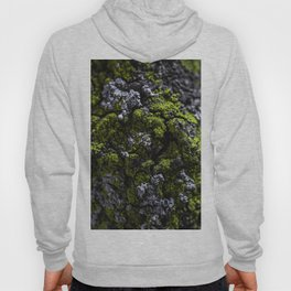 Barnacle Woodlands Hoody
