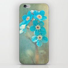 tiny treasures iPhone & iPod Skin
