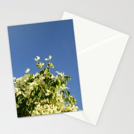 Dogwood #2 Stationery Cards