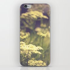 Driven to Distraction iPhone & iPod Skin