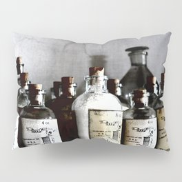 Medicine Man Pillow Sham