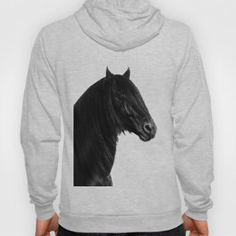 Black beauty Friesian stallion Hoody