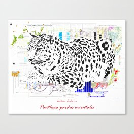 Natura Technica - Amur Leopard Canvas Print