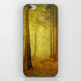 fairytale path iPhone Skin