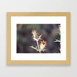 Flowers with thorns Framed Art Print