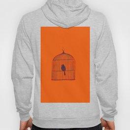 Orange Birdcage Hoody