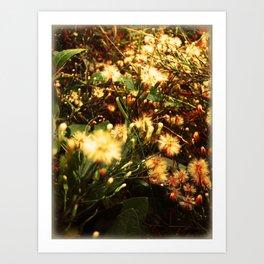 everything/dandelions Art Print