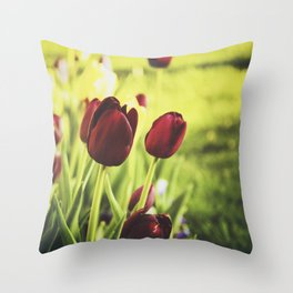 When Spring Was Here Throw Pillow
