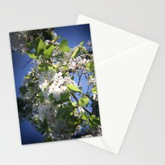 blossoms on vermont Stationery Cards