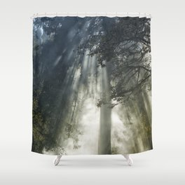 Smoke and Sun Filtered Through a Fir Tree Shower Curtain