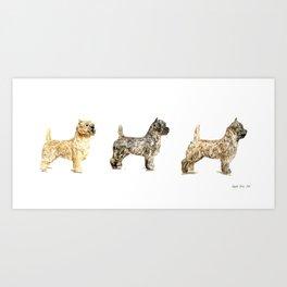 Cairn Terrier Art Print