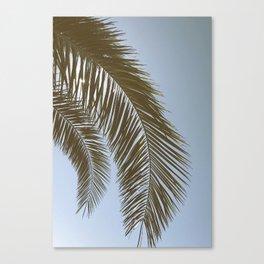 Vinnie Canvas Print