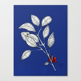 lomboy blue Canvas Print