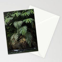 Mysterious leaves, in the lush jungles of Sumatra, Indonesia Stationery Cards