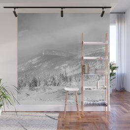 Winter day3 Wall Mural