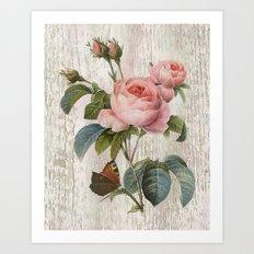 Roses Nostalgie Art Print