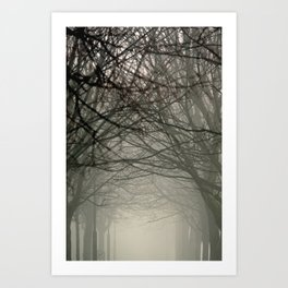 Branches meeting in the fog Art Print