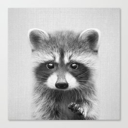 Raccoon - Black & White Canvas Print