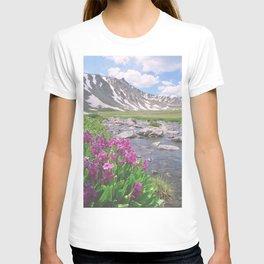 Above the tree line, in the tundra above Breckenridge, Colorado T-shirt