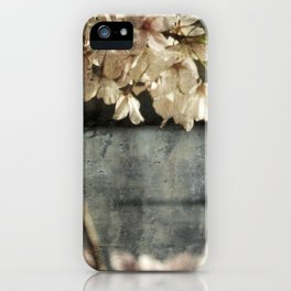 spring glide iPhone Case