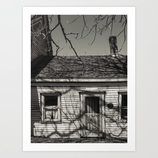 Shadow Branches Art Print