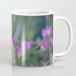 Butterfly On Purple Cornflower Coffee Mug