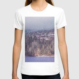 vintage landscape T-shirt