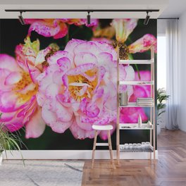 Pink Freckled Rose Flowers Wall Mural