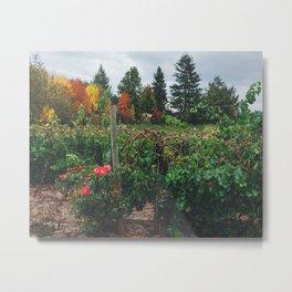 Fall on the Farm Metal Print