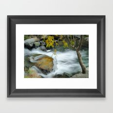 The tree and the river Framed Art Print