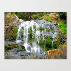 Waterfall over green rocks Canvas Print