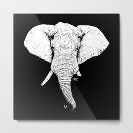 African Savanna Elephant Metal Print