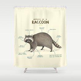 Anatomy of a Raccoon Shower Curtain