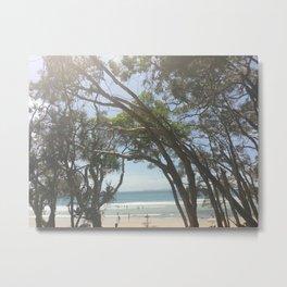 Tea tree bay Metal Print