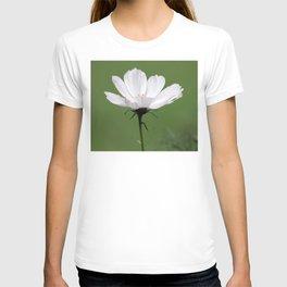 White Cosmo Daisy T-shirt